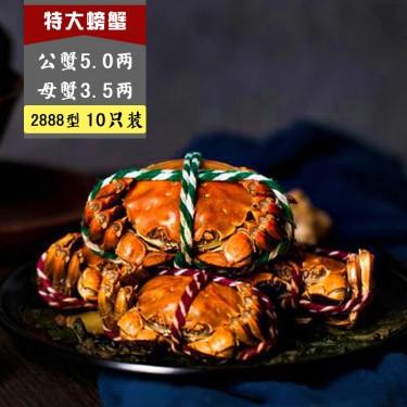 2888 E型 公蟹5.0两, 母蟹3.5两