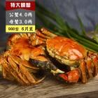 988 C型 公蟹4.0两, 母蟹3.0两