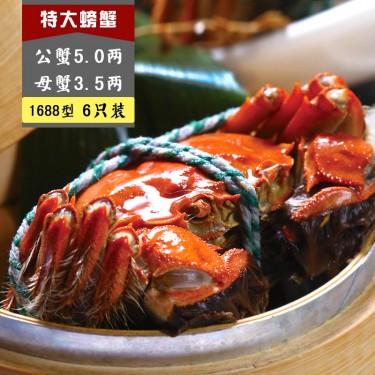 1688 E型 公蟹5.0两, 母蟹3.5两
