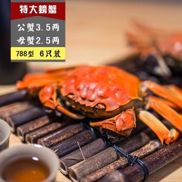 788 B型 公蟹3.5两, 母蟹2.5两